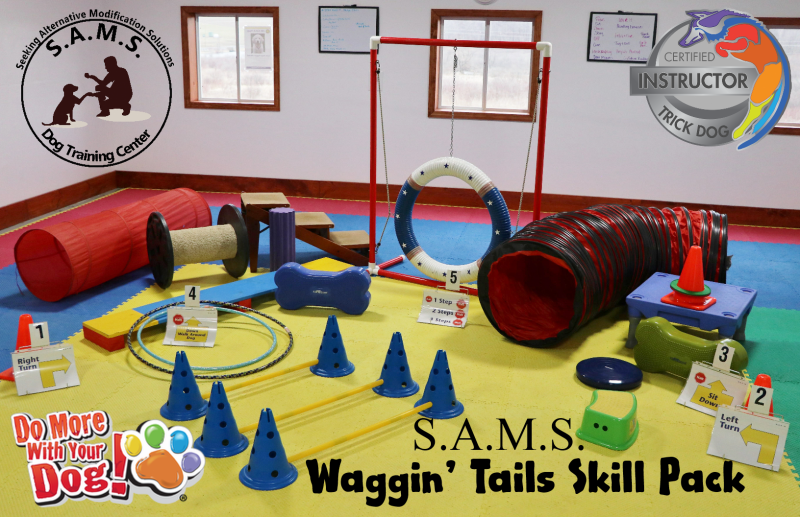 SAMS Waggin' Tails Skill Pack